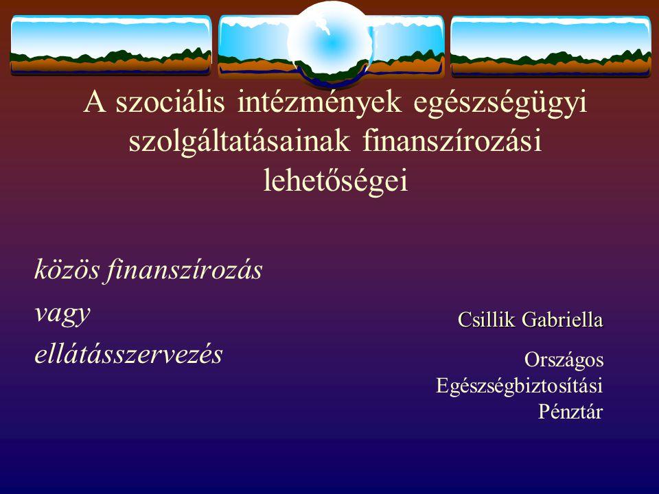 közös finanszírozás vagy ellátásszervezés