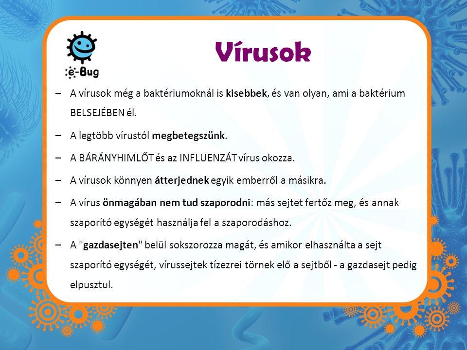 Vírusok A vírusok még a baktériumoknál is kisebbek, és van olyan, ami a baktérium BELSEJÉBEN él. A legtöbb vírustól megbetegszünk.