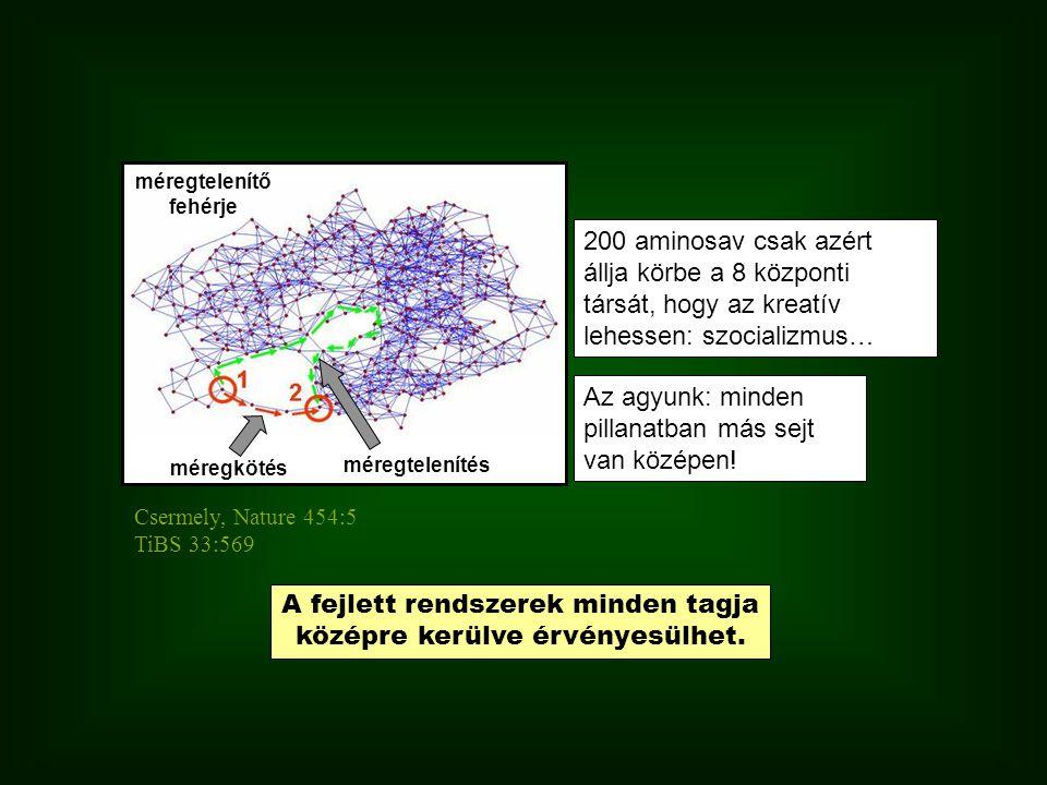 méregtelenítő fehérje