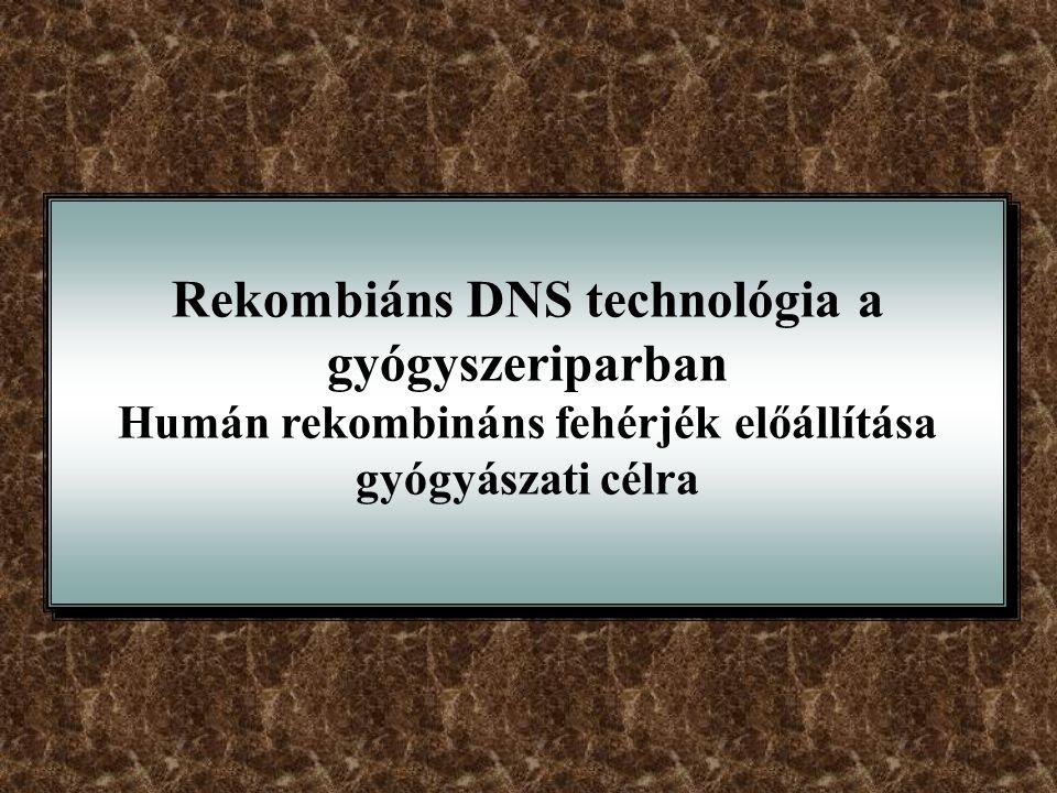 Rekombiáns DNS technológia a gyógyszeriparban