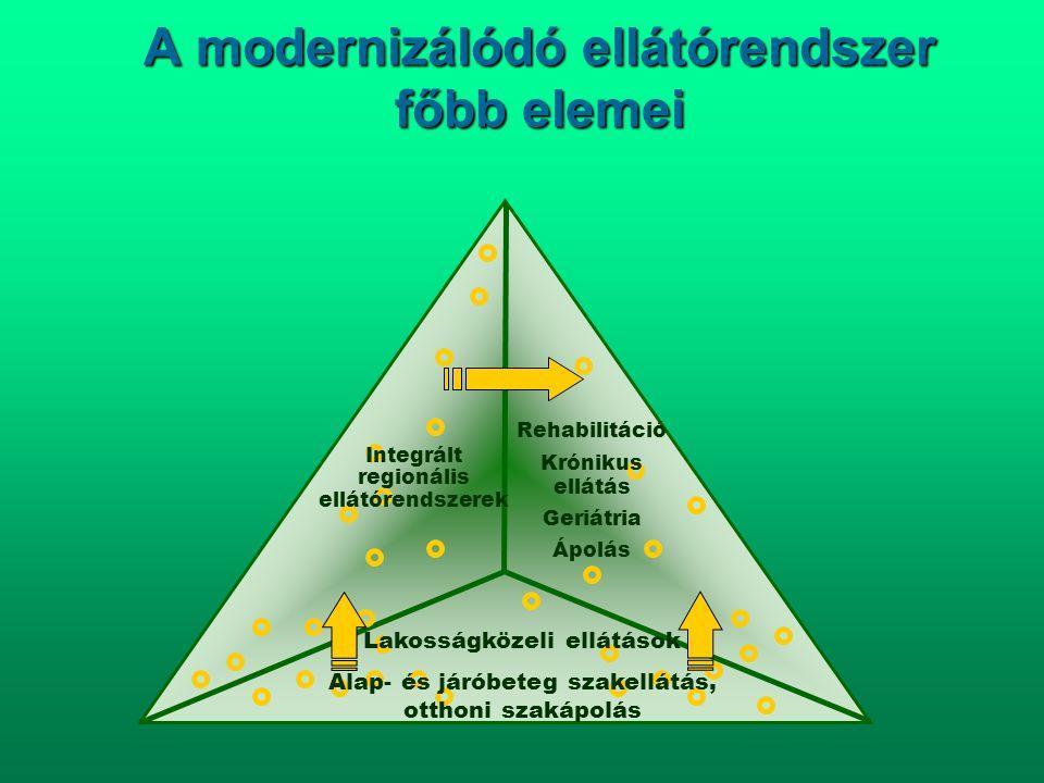 A modernizálódó ellátórendszer főbb elemei