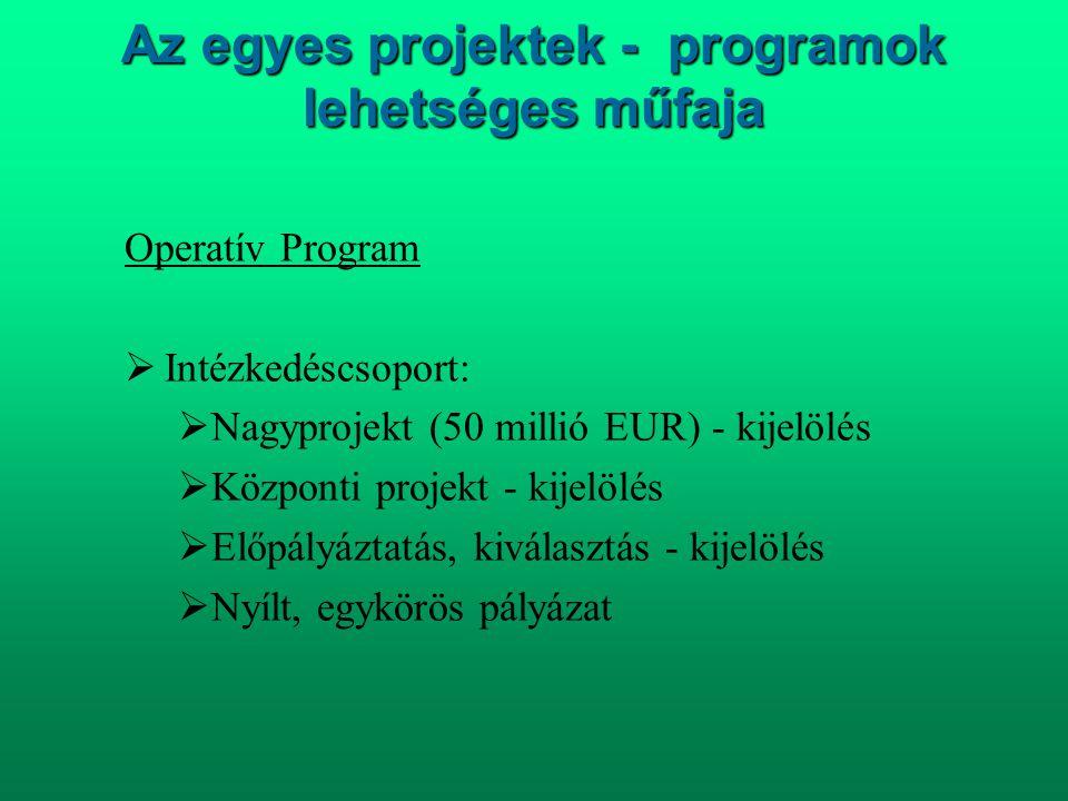 Az egyes projektek - programok lehetséges műfaja