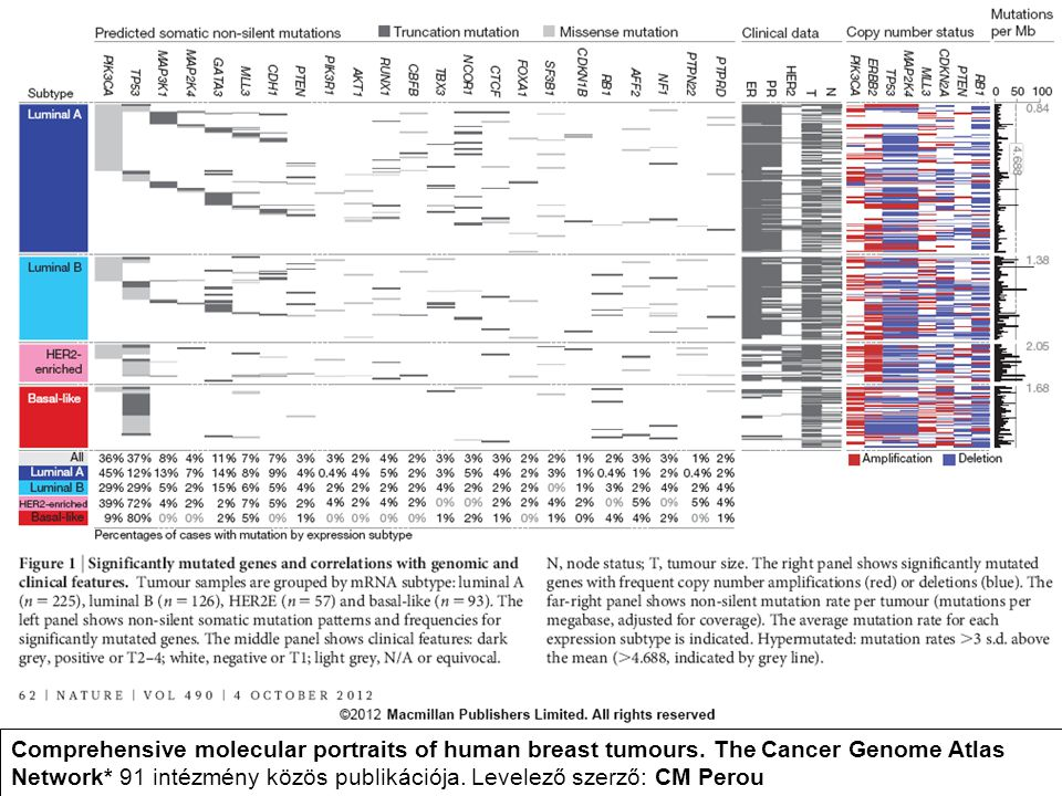 Comprehensive molecular portraits of human breast tumours