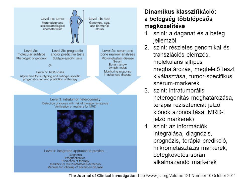 Dinamikus klasszifikáció: a betegség többlépcsős megközelítése