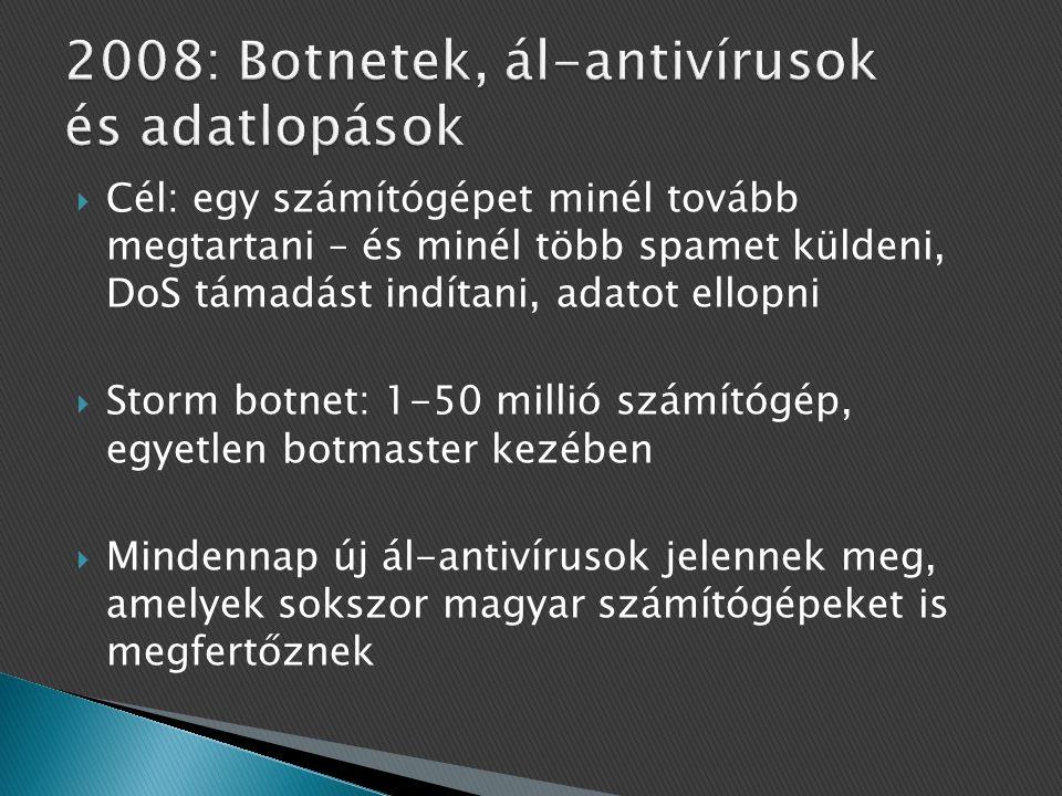 2008: Botnetek, ál-antivírusok és adatlopások