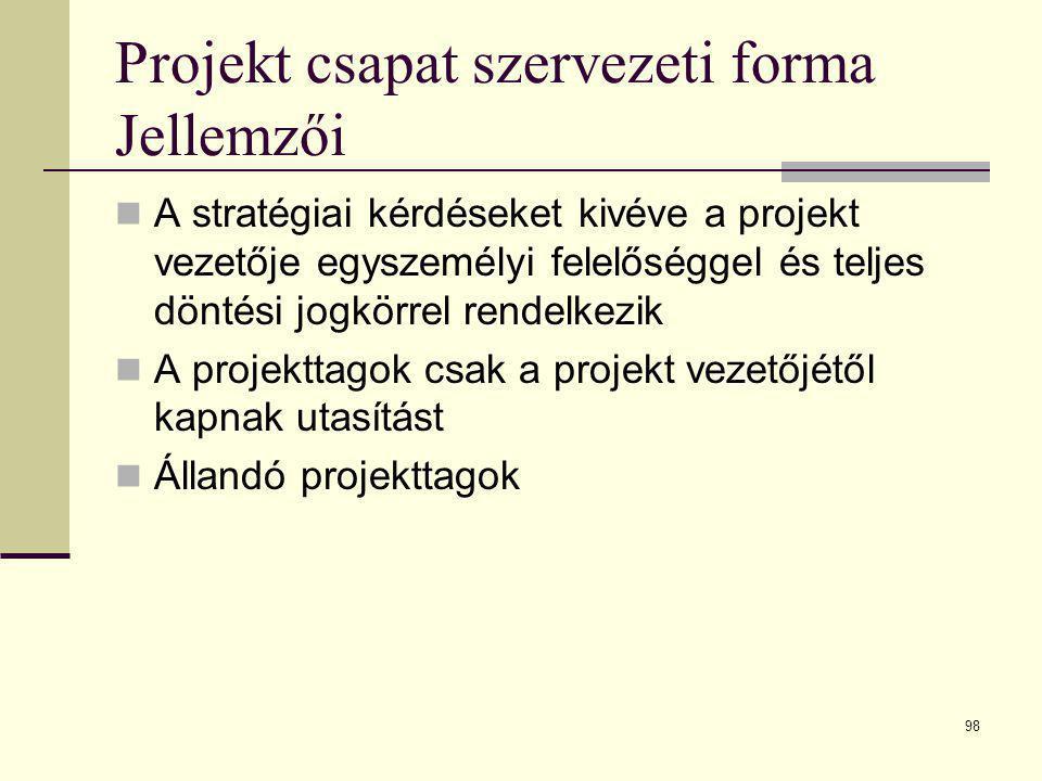 Projekt csapat szervezeti forma Jellemzői