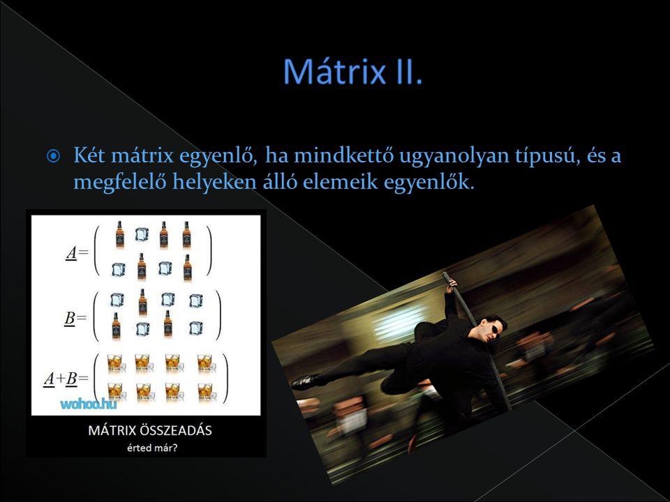 Mátrix II.