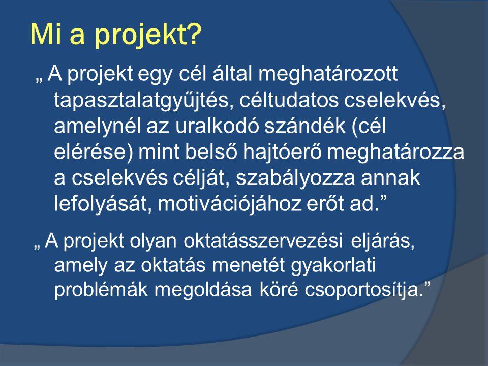 Mi a projekt