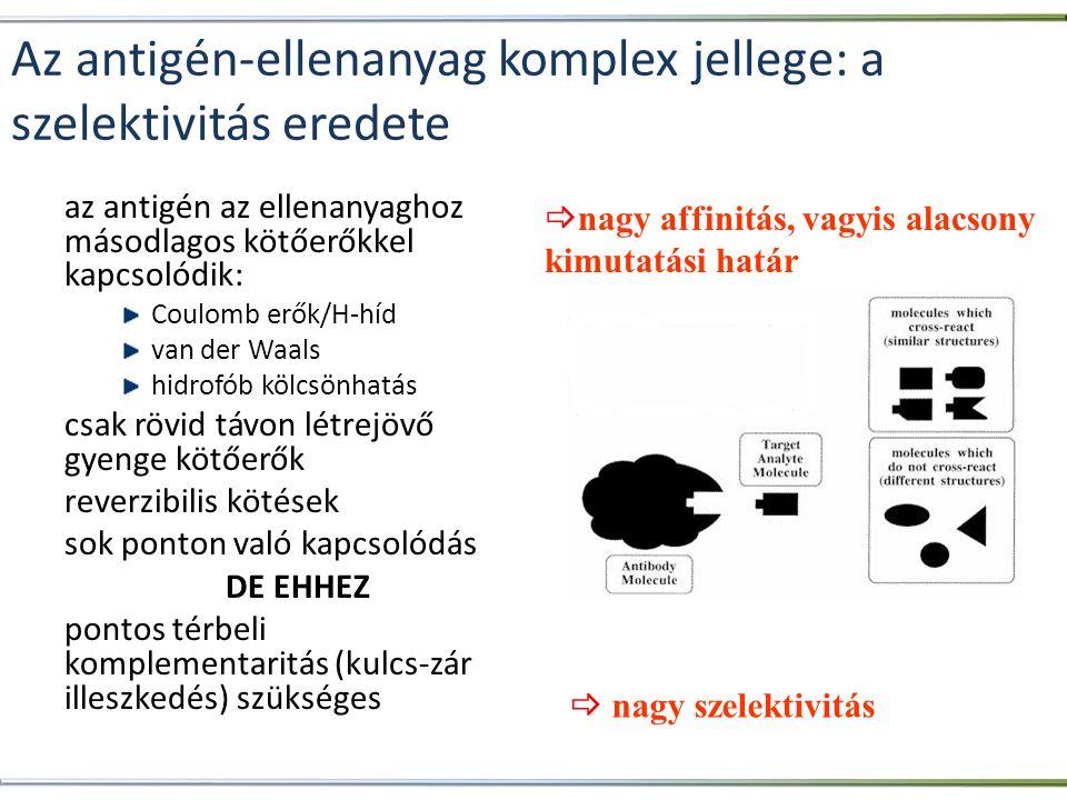 Az antigén-ellenanyag komplex jellege: a szelektivitás eredete