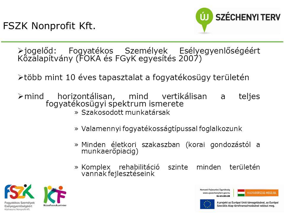 FSZK Nonprofit Kft. jogelőd: Fogyatékos Személyek Esélyegyenlőségéért Közalapítvány (FOKA és FGyK egyesítés 2007)