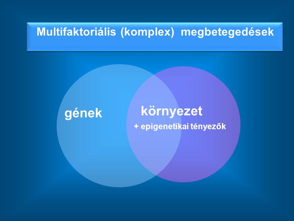 környezet gének Multifaktoriális (komplex) megbetegedések