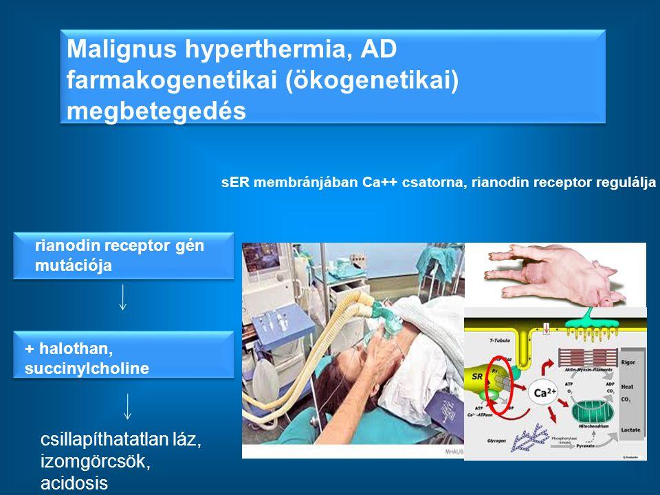 Malignus hyperthermia, AD farmakogenetikai (ökogenetikai) megbetegedés