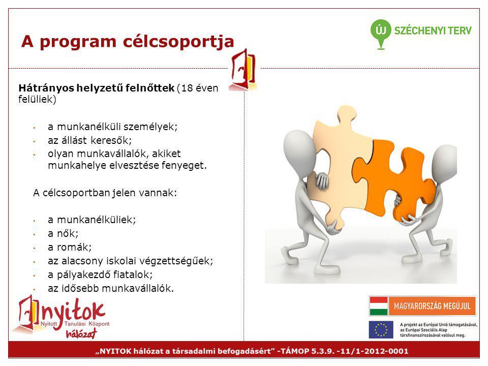 A program célcsoportja