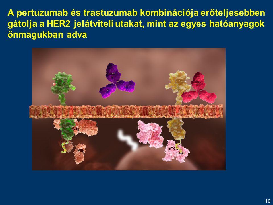A pertuzumab és trastuzumab kombinációja erőteljesebben gátolja a HER2 jelátviteli utakat, mint az egyes hatóanyagok önmagukban adva