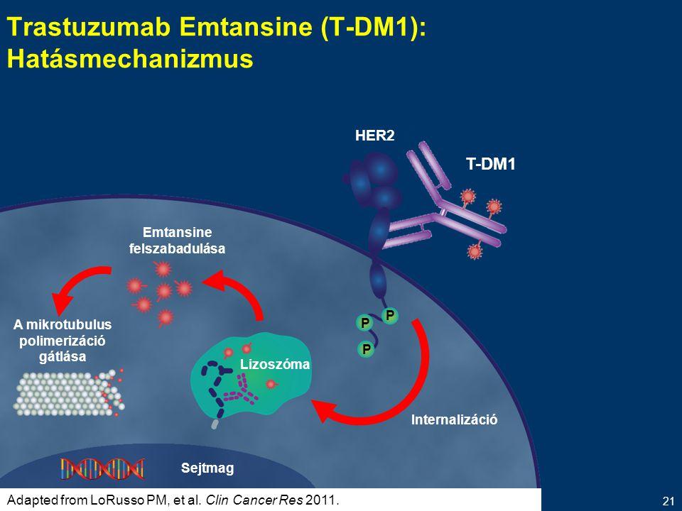 Trastuzumab Emtansine (T-DM1): Hatásmechanizmus