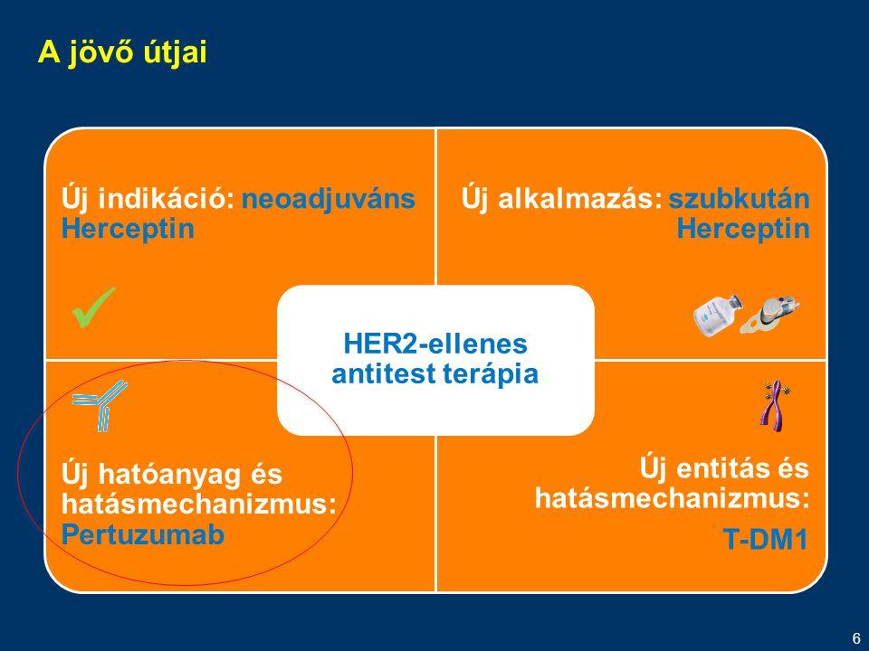 HER2-ellenes antitest terápia