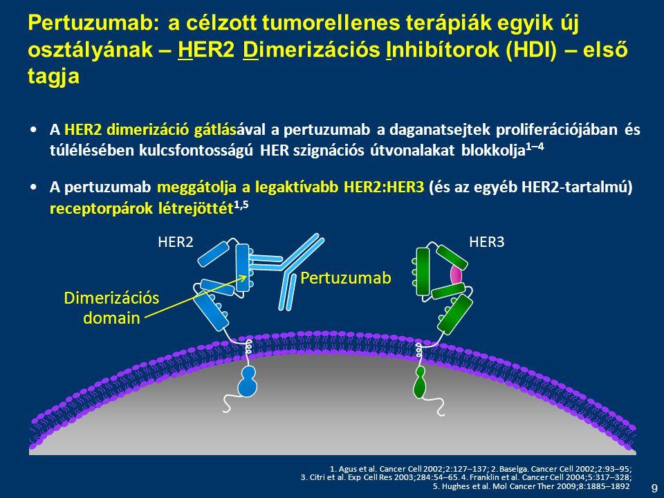 Pertuzumab: a célzott tumorellenes terápiák egyik új osztályának – HER2 Dimerizációs Inhibítorok (HDI) – első tagja