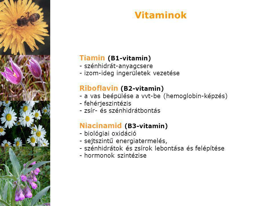 Vitaminok Tiamin (B1-vitamin) Riboflavin (B2-vitamin)