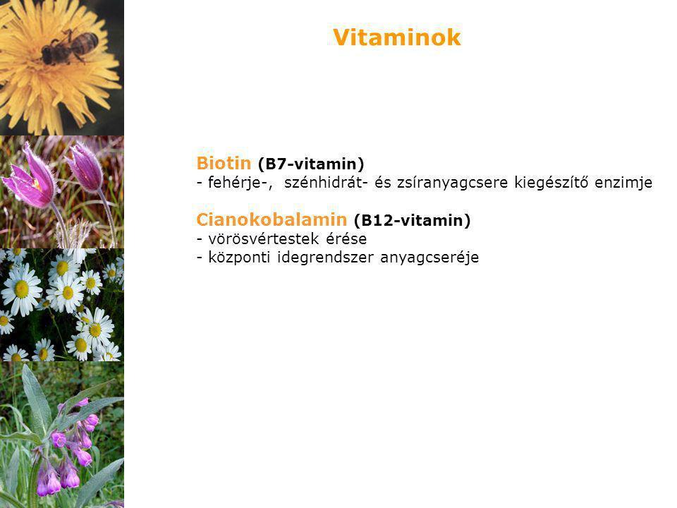 Vitaminok Biotin (B7-vitamin) Cianokobalamin (B12-vitamin)
