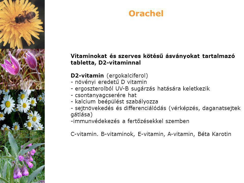 Orachel Vitaminokat és szerves kötésű ásványokat tartalmazó tabletta, D2-vitaminnal. D2-vitamin (ergokalciferol)