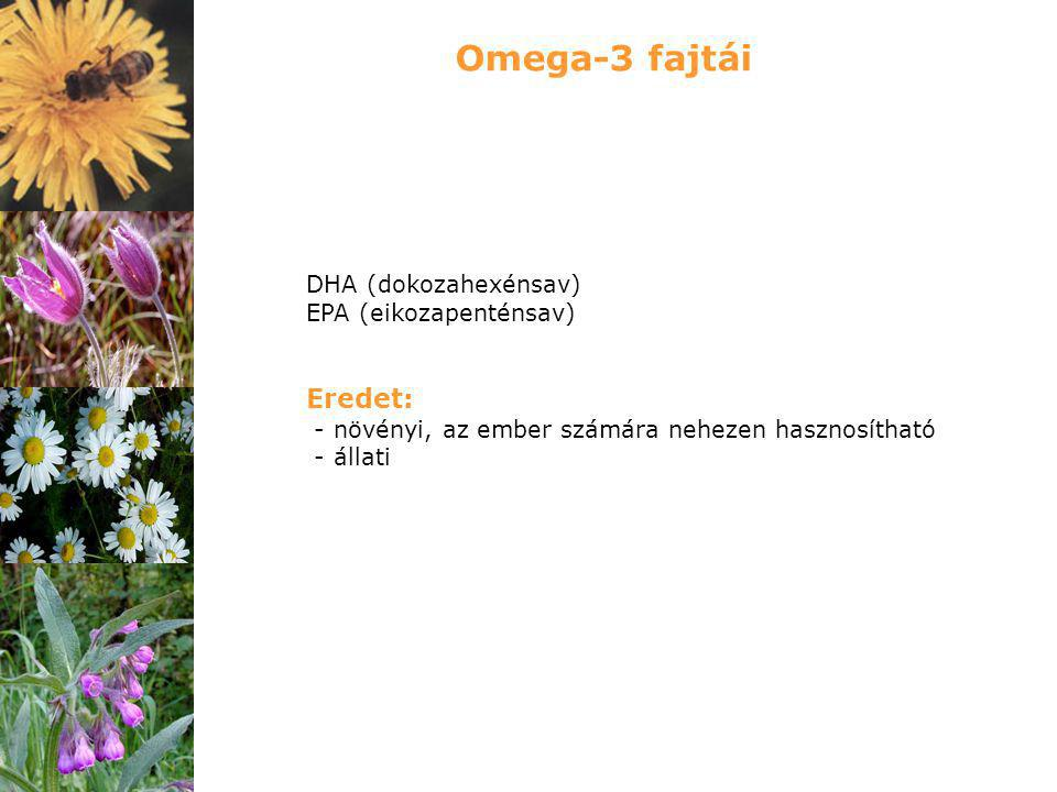 Omega-3 fajtái Eredet: DHA (dokozahexénsav) EPA (eikozapenténsav)