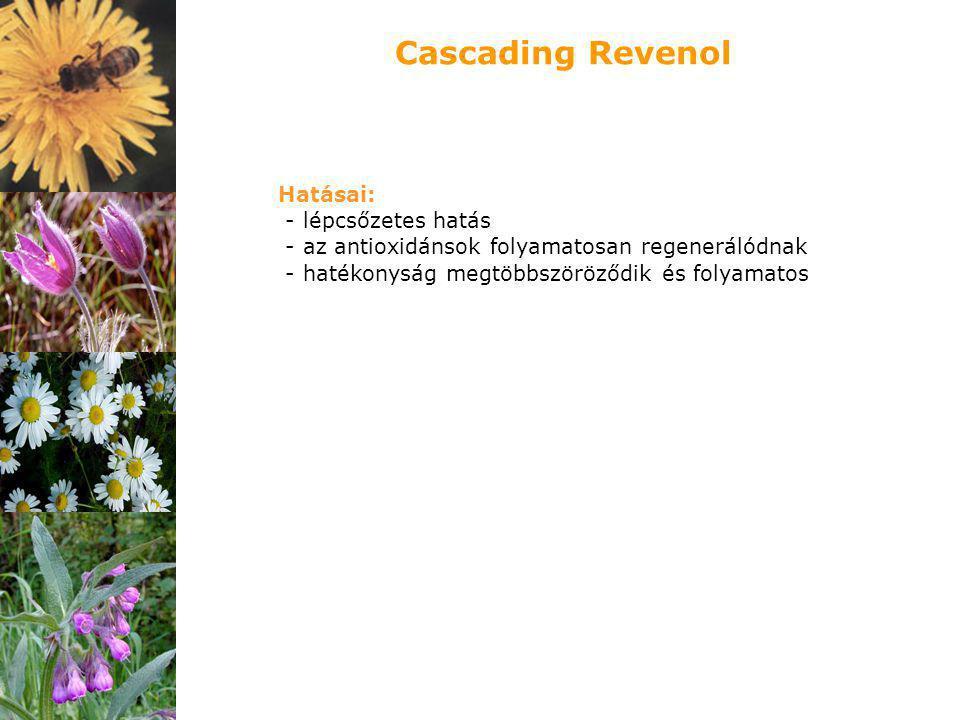 Cascading Revenol Hatásai: - lépcsőzetes hatás