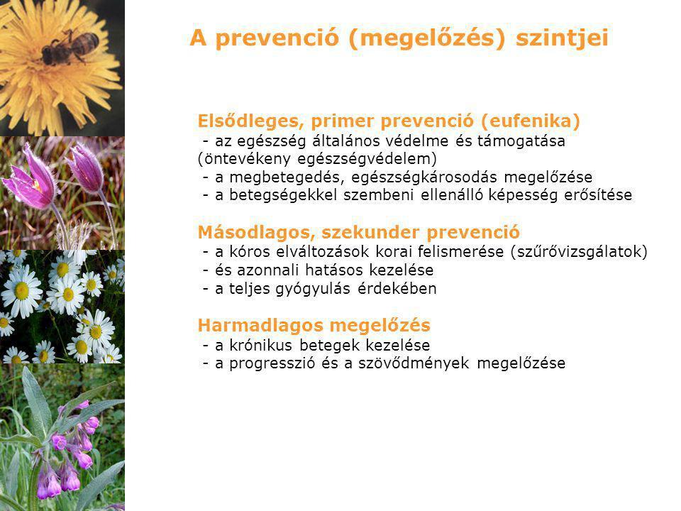 A prevenció (megelőzés) szintjei