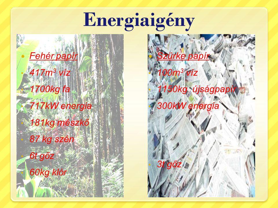 Energiaigény Fehér papír 417m3 víz 1700kg fa 717kW energia