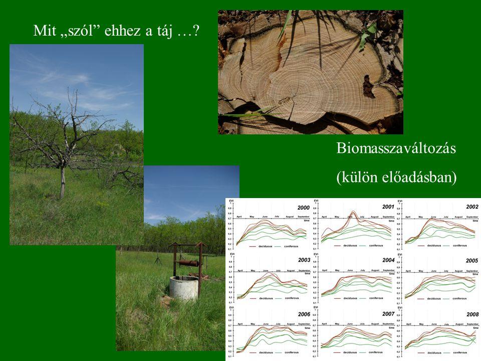 """Mit """"szól ehhez a táj … Biomasszaváltozás (külön előadásban)"""