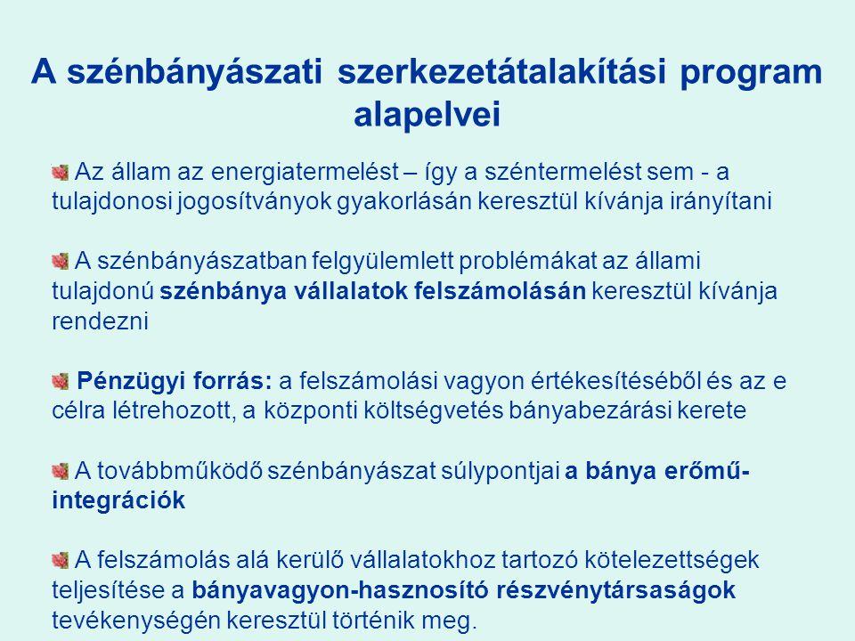 A szénbányászati szerkezetátalakítási program alapelvei