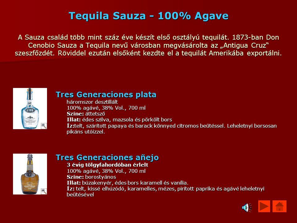 """Tequila Sauza - 100% Agave A Sauza család több mint száz éve készít első osztályú tequilát. 1873-ban Don Cenobio Sauza a Tequila nevű városban megvásárolta az """"Antigua Cruz szeszfőzdét. Röviddel ezután elsőként kezdte el a tequilát Amerikába exportálni."""