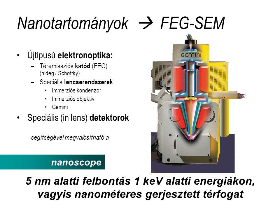 Nanotartományok  FEG-SEM