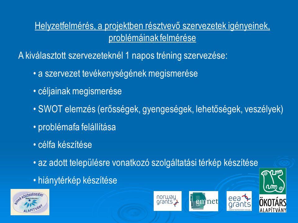 Helyzetfelmérés, a projektben résztvevő szervezetek igényeinek, problémáinak felmérése