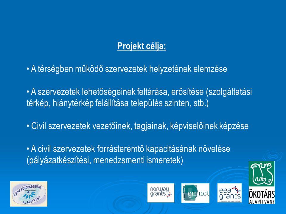 Projekt célja: A térségben működő szervezetek helyzetének elemzése.
