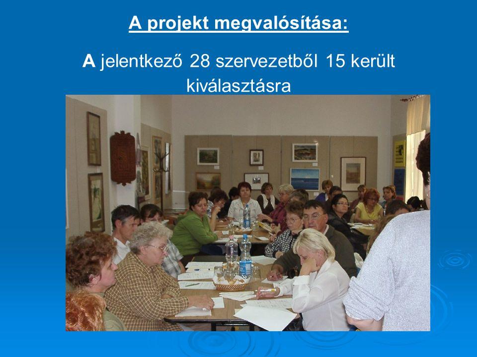 A projekt megvalósítása: A jelentkező 28 szervezetből 15 került kiválasztásra