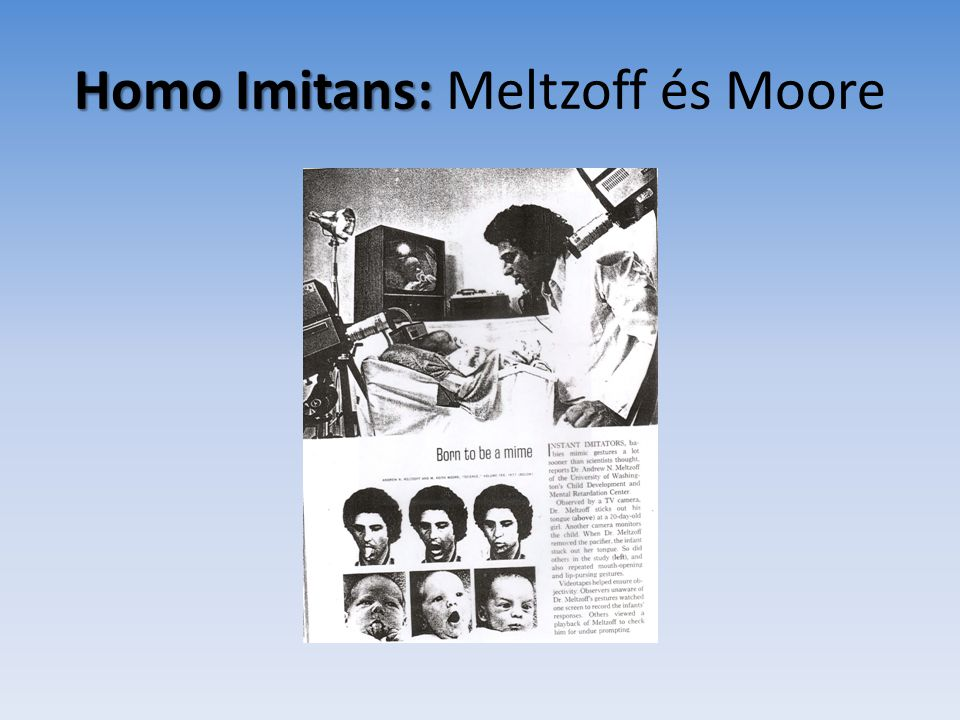 Homo Imitans: Meltzoff és Moore
