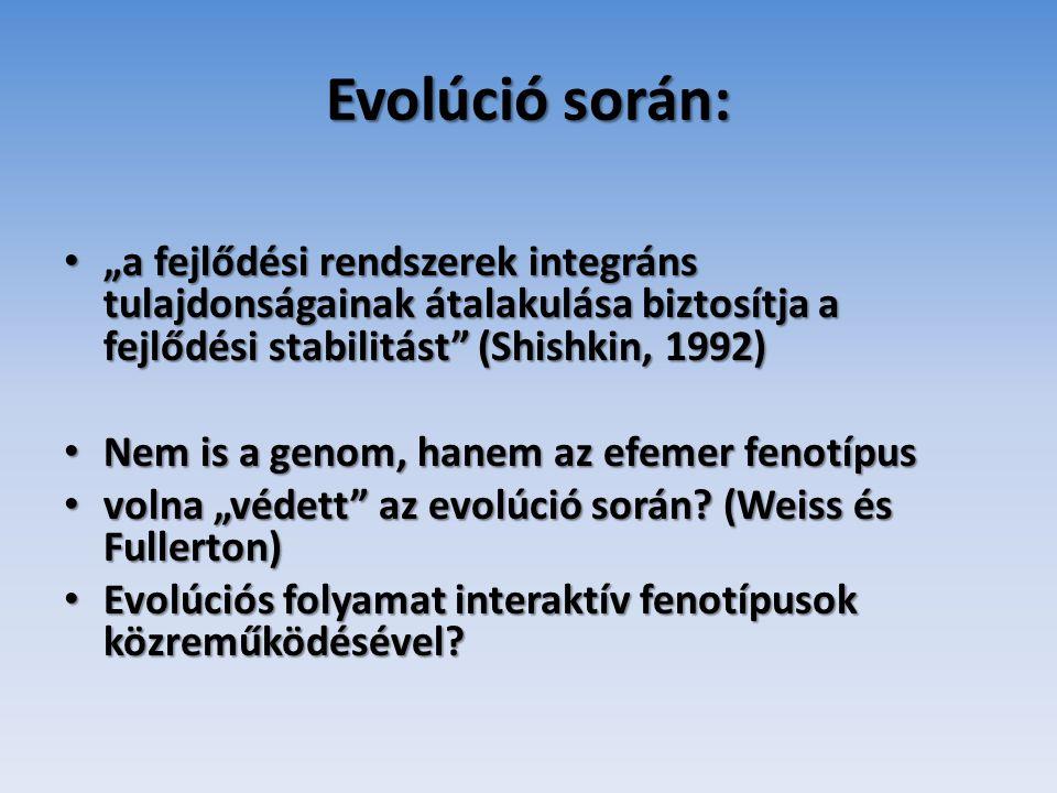 """Evolúció során: """"a fejlődési rendszerek integráns tulajdonságainak átalakulása biztosítja a fejlődési stabilitást (Shishkin, 1992)"""