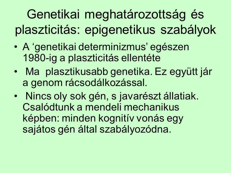 Genetikai meghatározottság és plaszticitás: epigenetikus szabályok