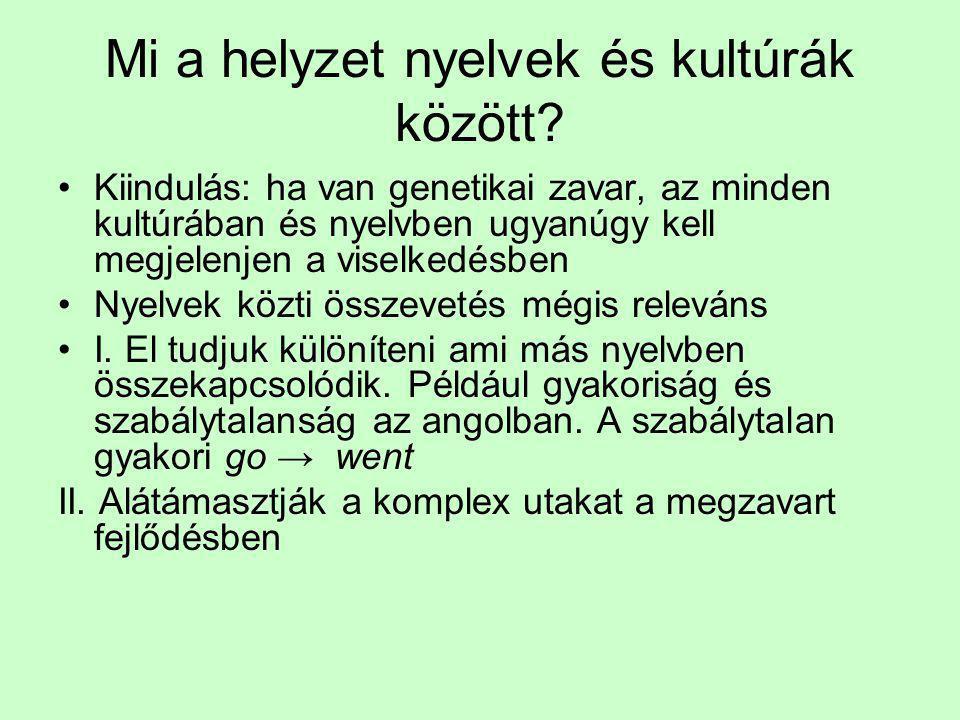 Mi a helyzet nyelvek és kultúrák között