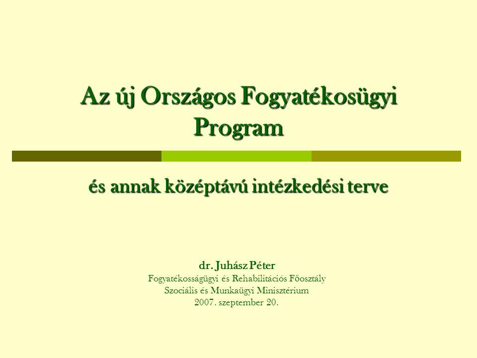 Az új Országos Fogyatékosügyi Program és annak középtávú intézkedési terve