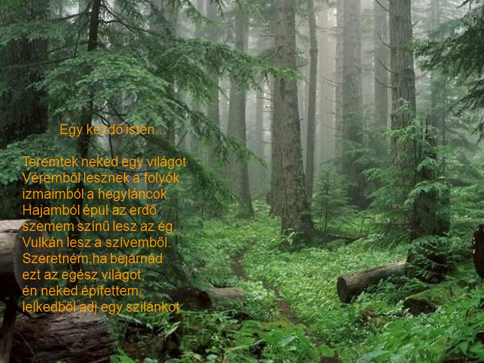Egy kezdő isten... Teremtek neked egy világot. Véremből lesznek a folyók, izmaimból a hegyláncok.