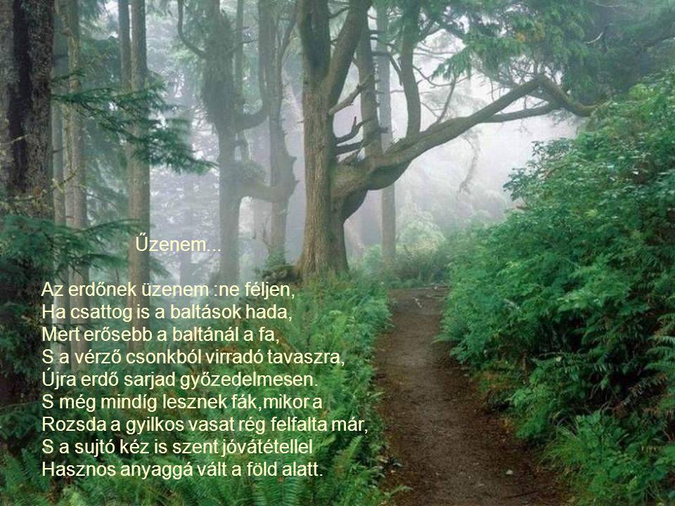 Űzenem... Az erdőnek üzenem :ne féljen, Ha csattog is a baltások hada, Mert erősebb a baltánál a fa,