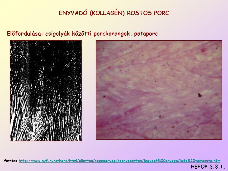 ENYVADÓ (KOLLAGÉN) ROSTOS PORC