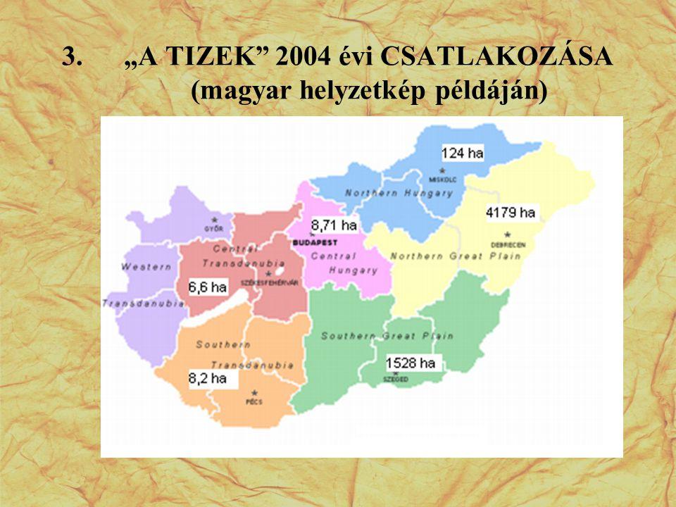 """""""A TIZEK 2004 évi CSATLAKOZÁSA (magyar helyzetkép példáján)"""