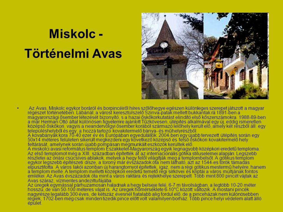 Miskolc - Történelmi Avas