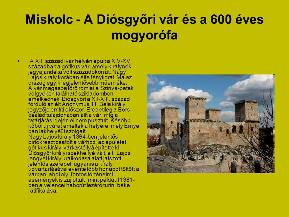 Miskolc - A Diósgyőri vár és a 600 éves mogyorófa