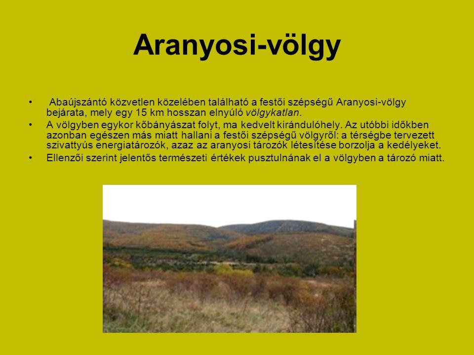 Aranyosi-völgy Abaújszántó közvetlen közelében található a festői szépségű Aranyosi-völgy bejárata, mely egy 15 km hosszan elnyúló völgykatlan.