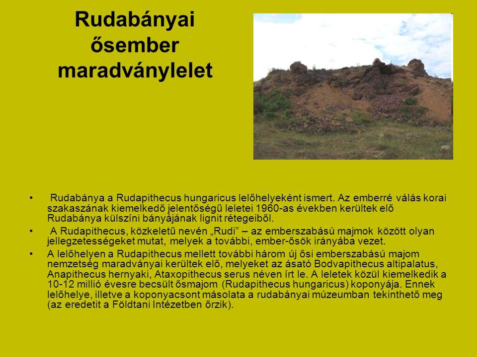 Rudabányai ősember maradványlelet