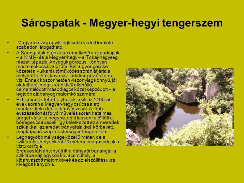 Sárospatak - Megyer-hegyi tengerszem