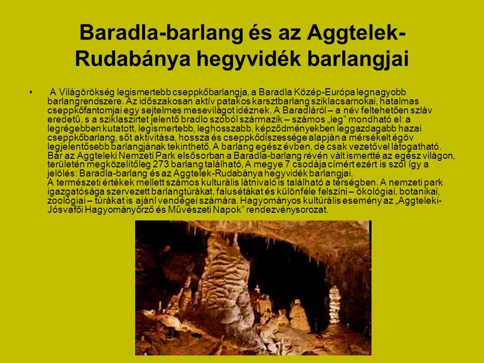 Baradla-barlang és az Aggtelek-Rudabánya hegyvidék barlangjai